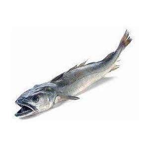 tiempo salmon lekue